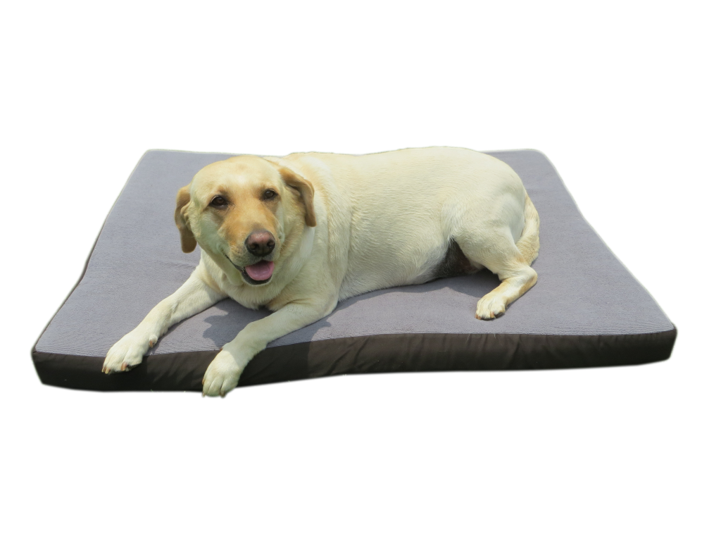 pet dog quilted to beds pillow dogbed top serta pillowtop bed wishlist product quiltedpillowtop large loading add