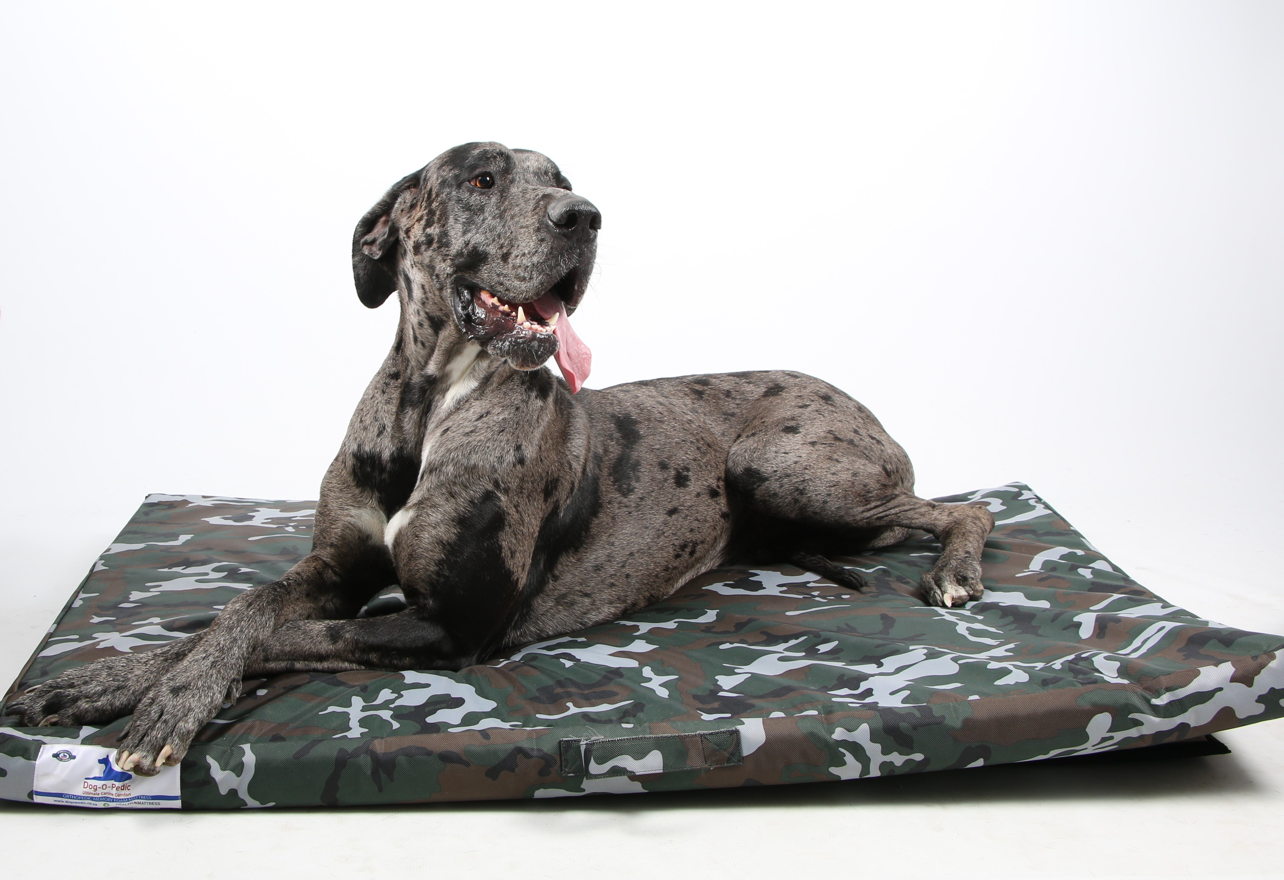 bed foam cover with removable x memory pet amazon dog brindle khaki soft supplies com washable dp